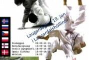 Úrslit RIG Judo Open/AM 2013