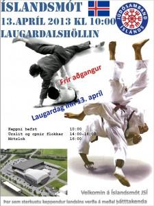 IM 2013 Plakat
