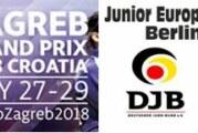 Úrslit Grand Prix Zagreb og Junior European Cup Berlín