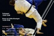 Alþjóðlegt judomót í höllinni